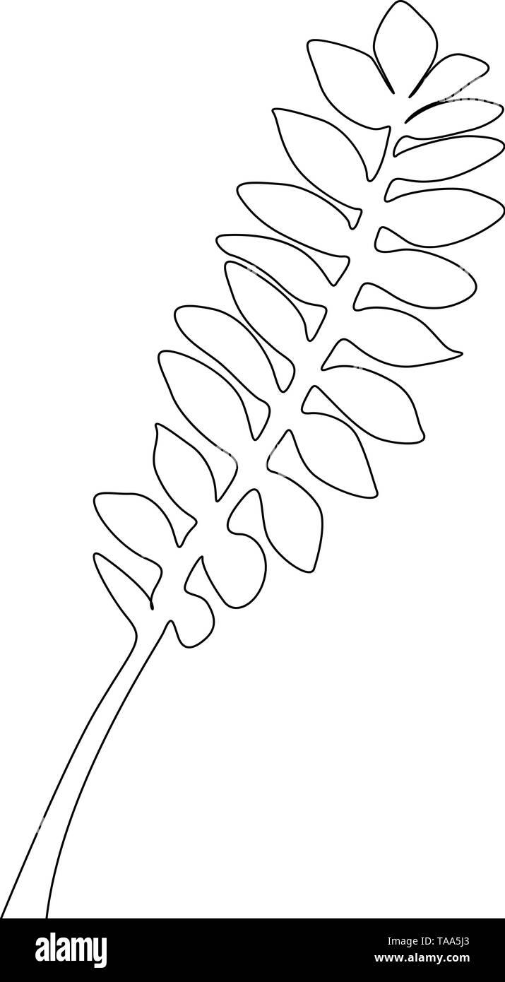Eine Strichzeichnung tropischen Zweig Blatt. Durchgehende Linie exotische tropische Pflanzen. Stockbild