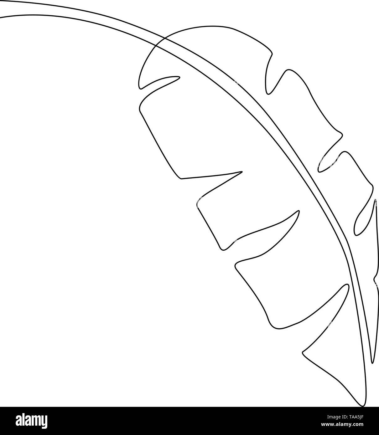 Eine Strichzeichnung Banana Leaf. Durchgehende Linie exotische tropische Pflanzen. Stockbild
