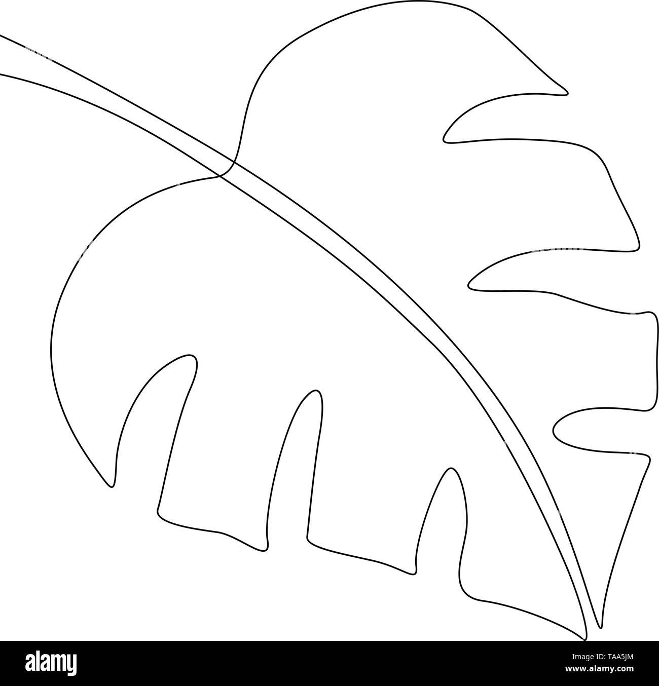 Eine Strichzeichnung monstera. Kontinuierliche Linie exotische tropische Pflanzen. Stockbild