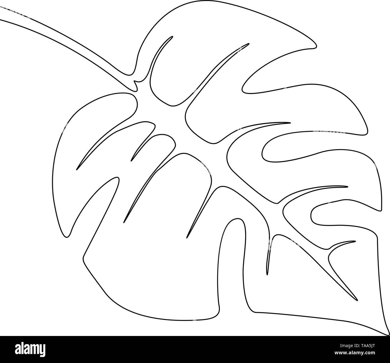 Eine Strichzeichnung monstera Blatt. Durchgehende Linie exotische tropische Pflanzen. Stockbild