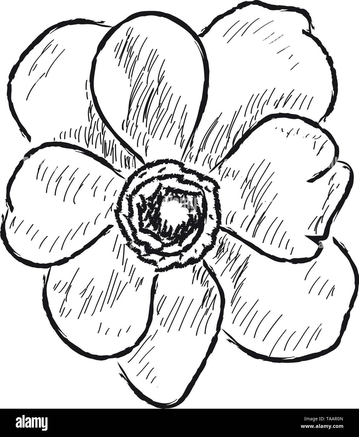 Isolierten Skizze einer Blume auf weißem Hintergrund Stockbild