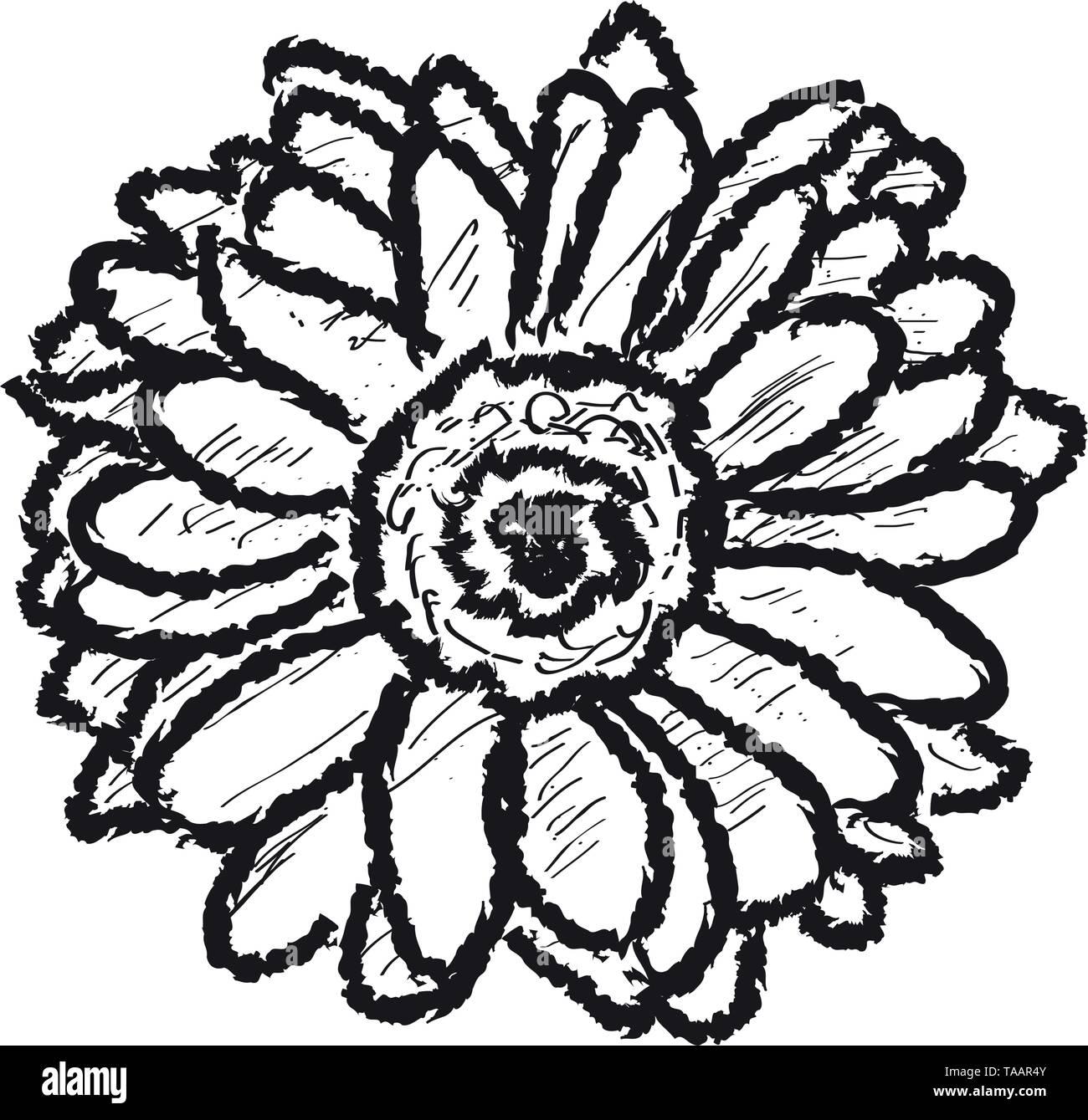 Skizze eines daisy flower auf einem weißen backgroound Stockbild