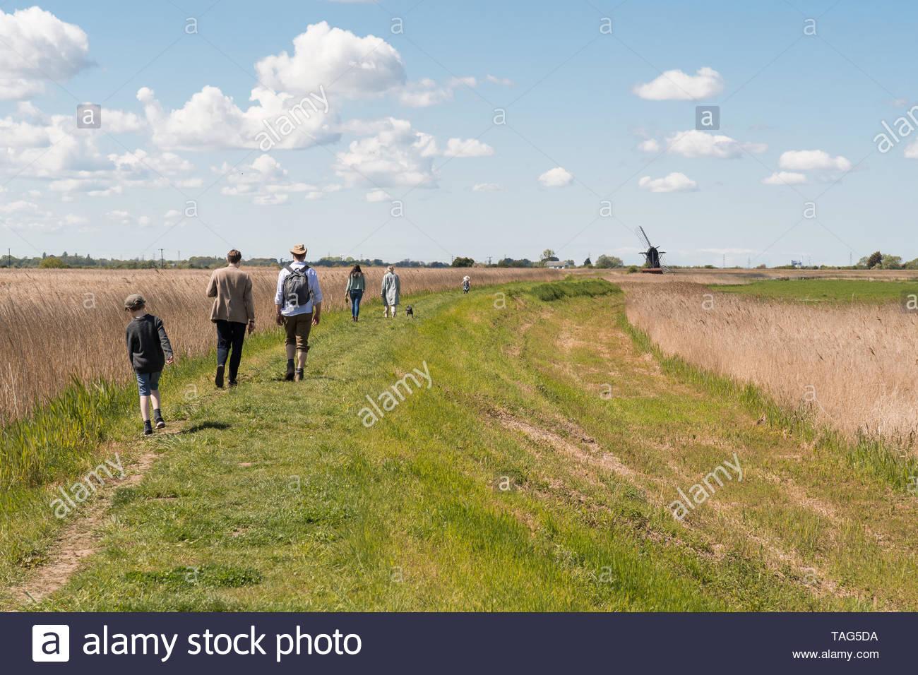 Gruppe von Menschen, die zu Fuß in Richtung Herringfleet Windmühle ein Grad II Kittel Mühle an Herringfleet, Suffolk, England aufgeführt, auf die Nationalen Mühlen Tag 2019 Stockbild