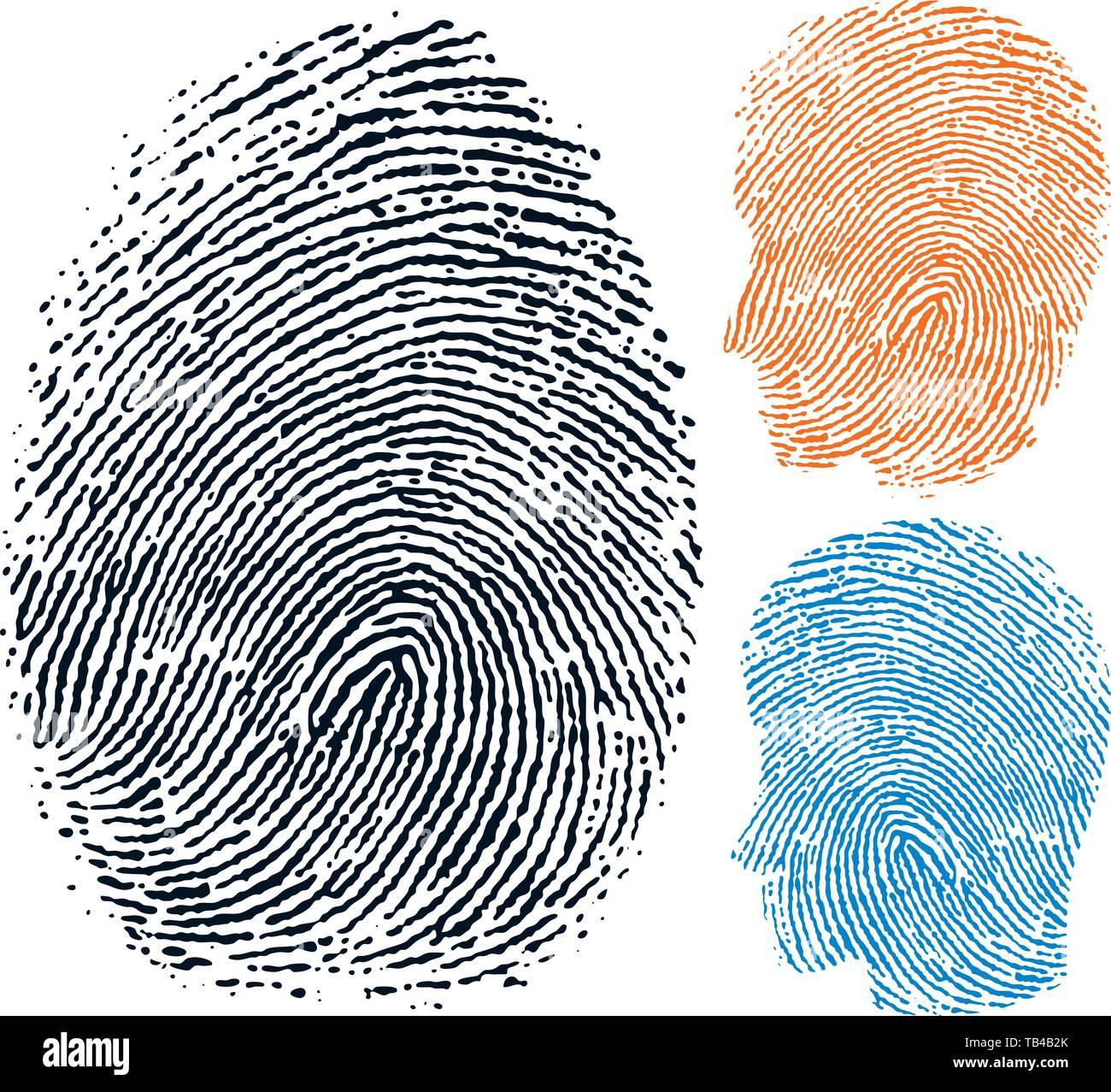 Vector Illustration. Fingerabdruck. Die persönliche Identität Gesicht in drei Versionen Stockbild