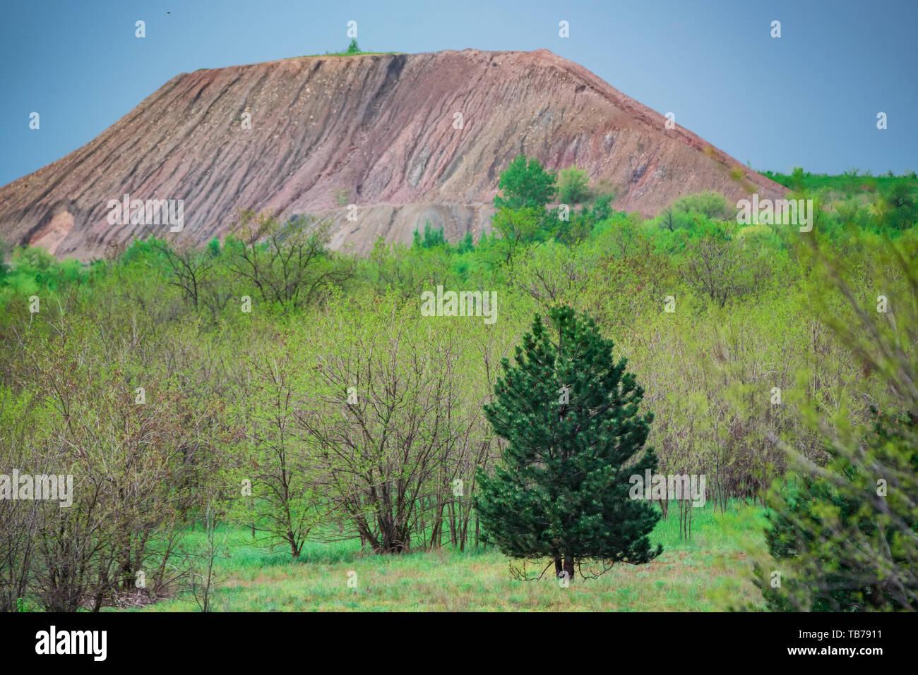 Blick auf Beute Tipp in Grün steppe Stockbild
