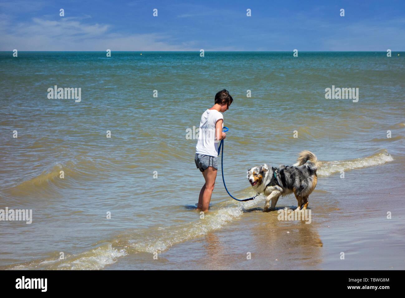 Hündin besitzer Lehre unsicher/ängstlich Hund Meer Wasser gewöhnen und nass von Paddeln in der Brandung Stockbild