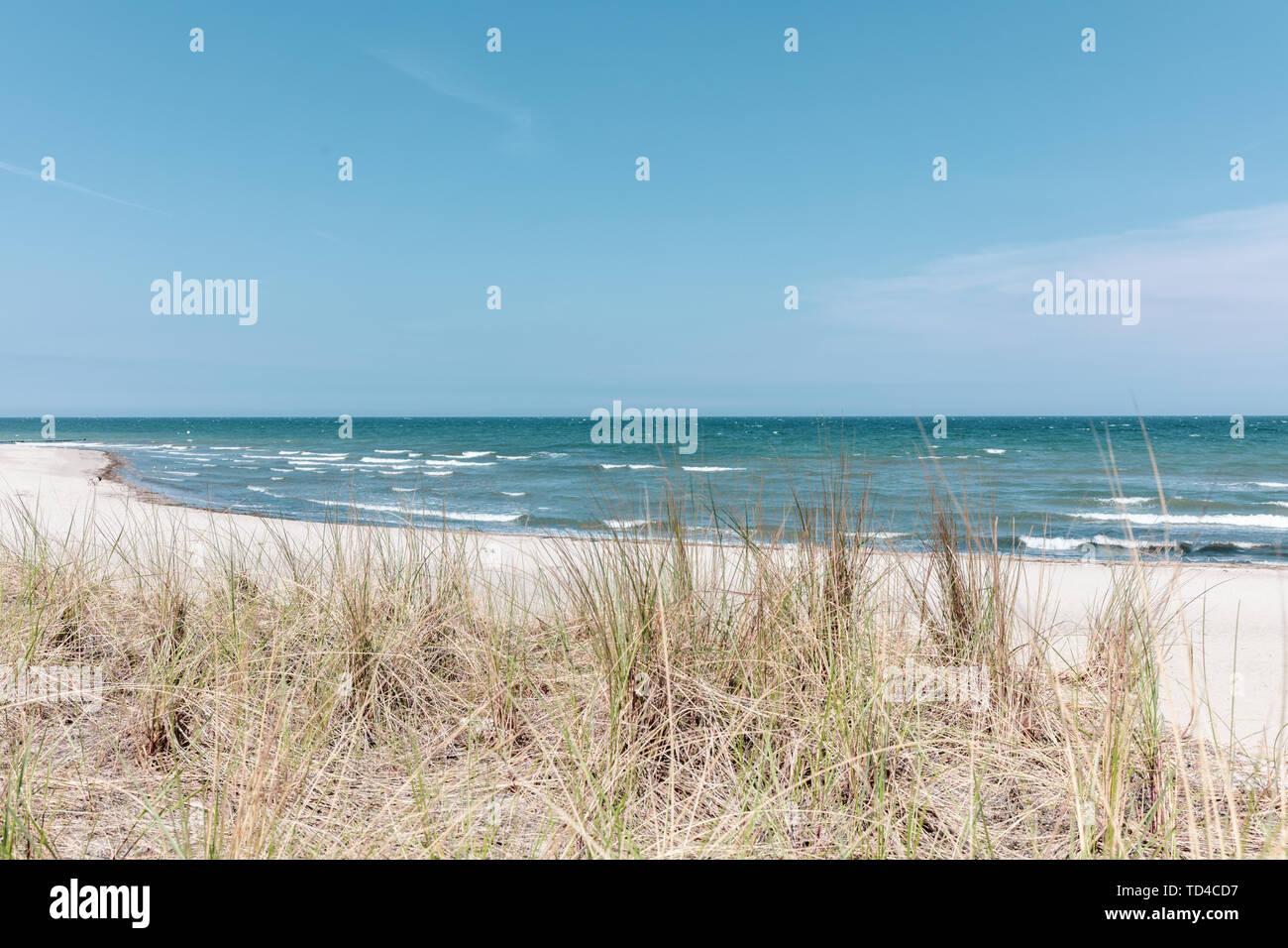 Der Blick über die Dünenlandschaft der Ostsee bei schönem Wetter Stockfoto