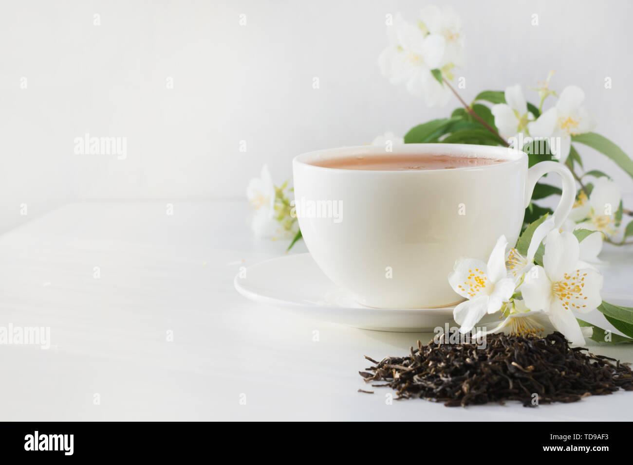 Tasse Grün Jasmin Tee White Jasmine Blumen auf weißem Hintergrund. Kopieren Sie Platz. Teatime. Stockbild