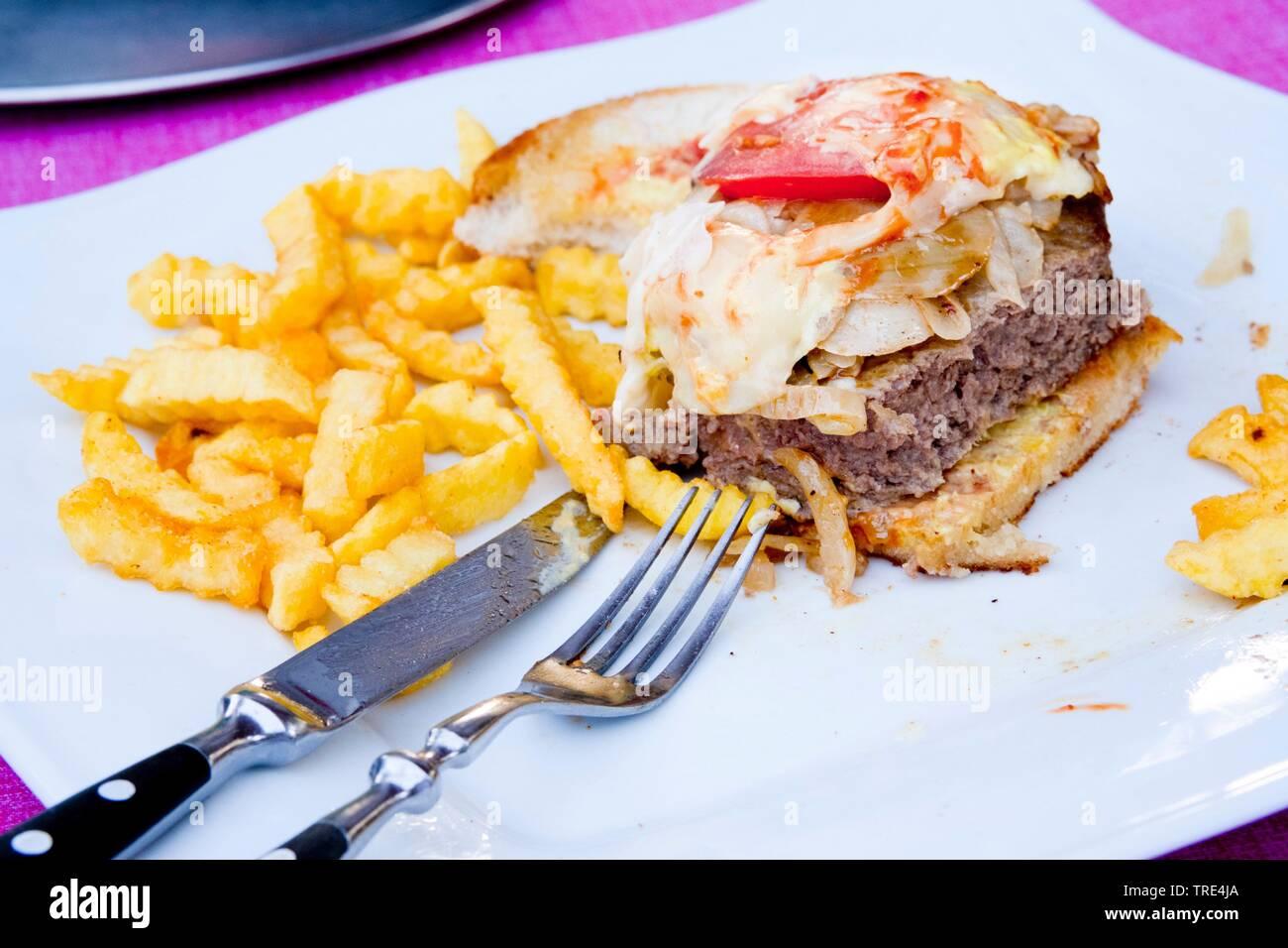 Hamburger und Pommes frites, Bundesrepublik Deutschland | Hamburger mit Pommes frites, Bundesrepublik Deutschland | BLWS 517153.jpg [(c) Blickwinkel/M Stockbild