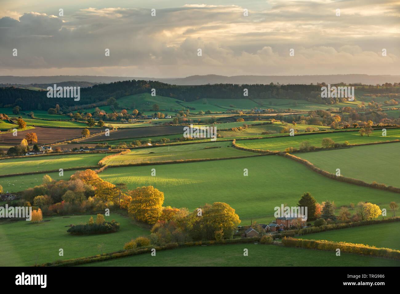 Herbstliche Farben, Corton Denham, Somerset, England, Großbritannien Stockfoto