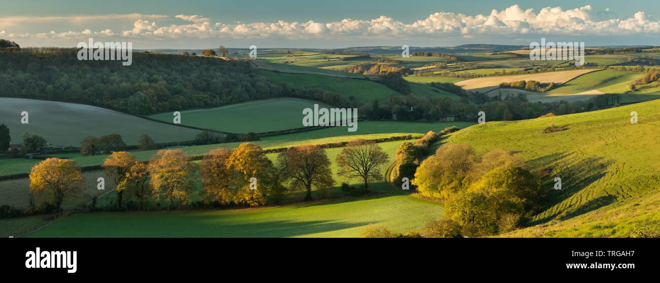 Die hügelige Landschaft rund um Plüsch im Herbst von Ball Hill, Dorset, England, Großbritannien Stockbild
