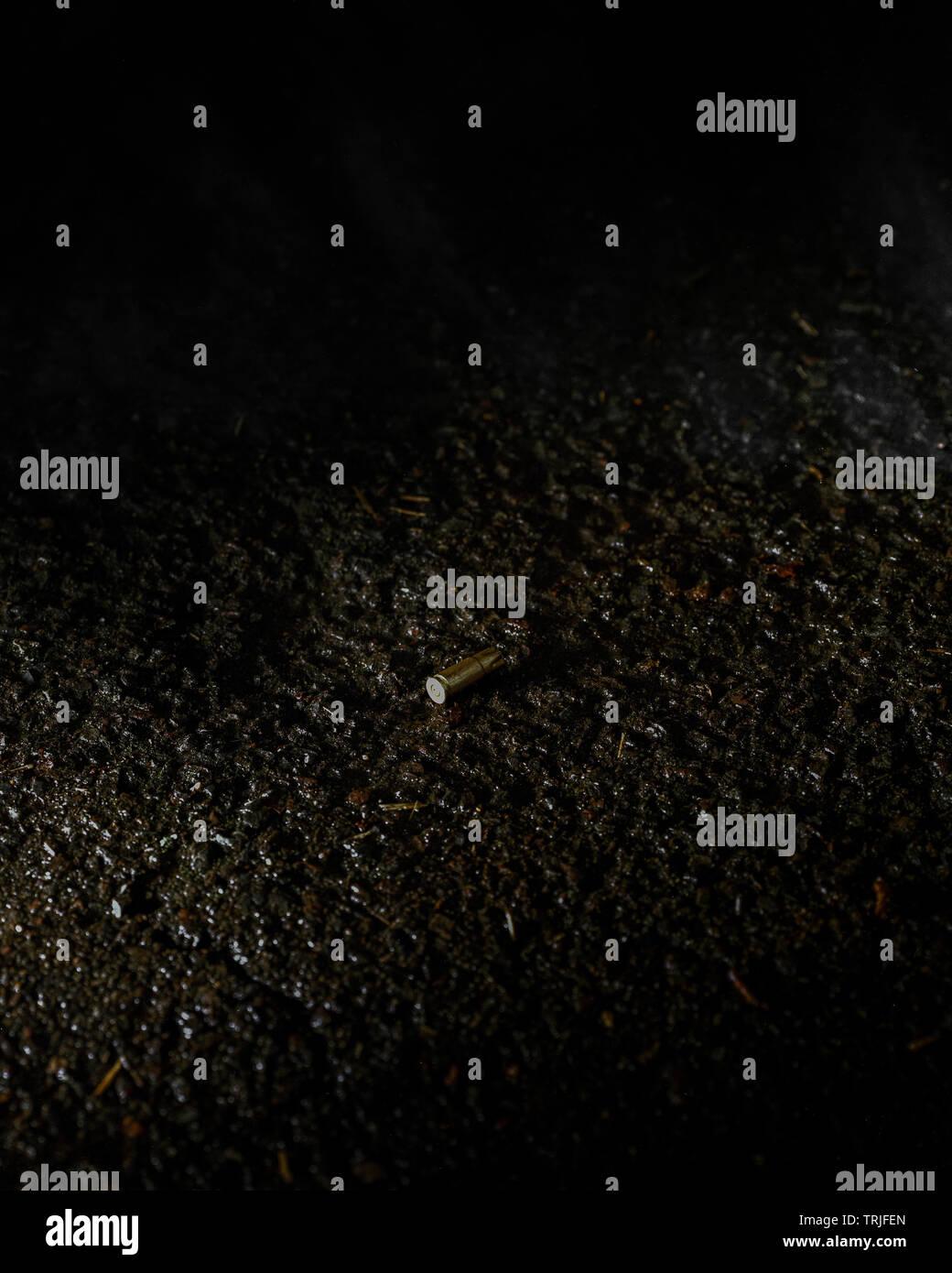 Verworfen Bullet Gehäuse Stockbild
