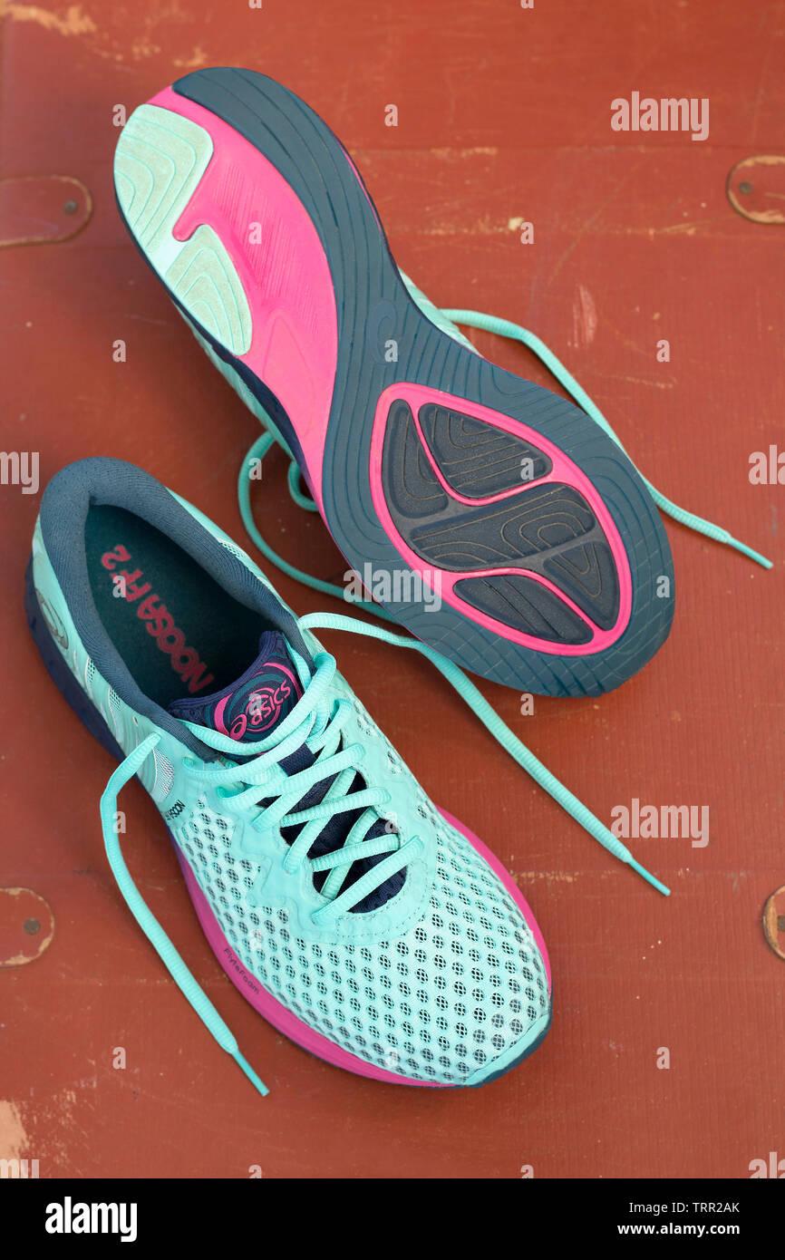 Rasse Asics Schuhe Damen Asics Roadhawk Ff Running Schuhe