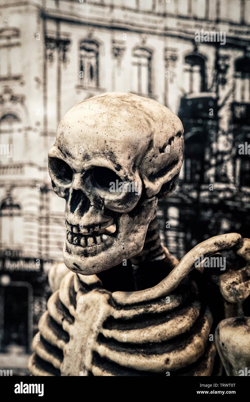 Menschlicher Schädel und Skelett dummy Stockfoto