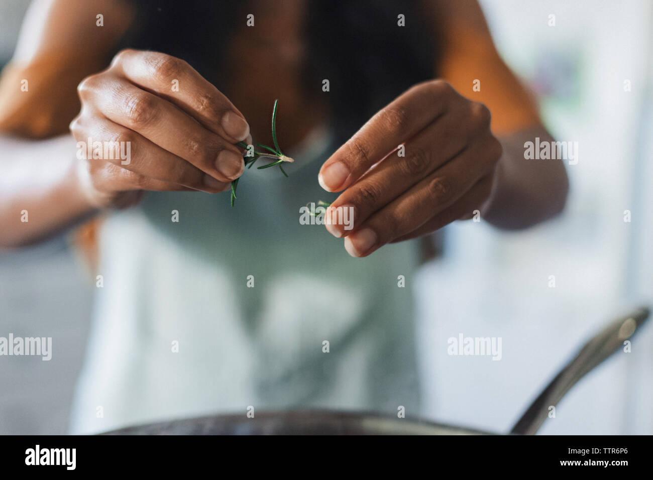 Mittelteil der Frau setzen rosemaries in Küchengeräten während der Zubereitung von Speisen in der Küche Stockbild