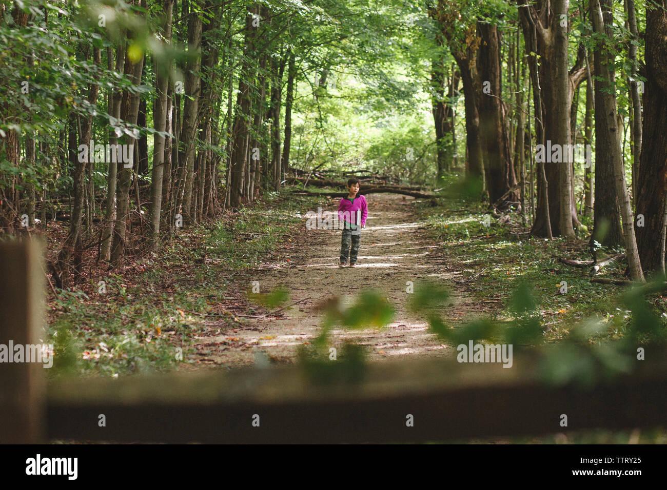Volle Länge des Jungen mit Buch zu Fuß auf Gehweg inmitten von Bäumen im Wald Stockbild