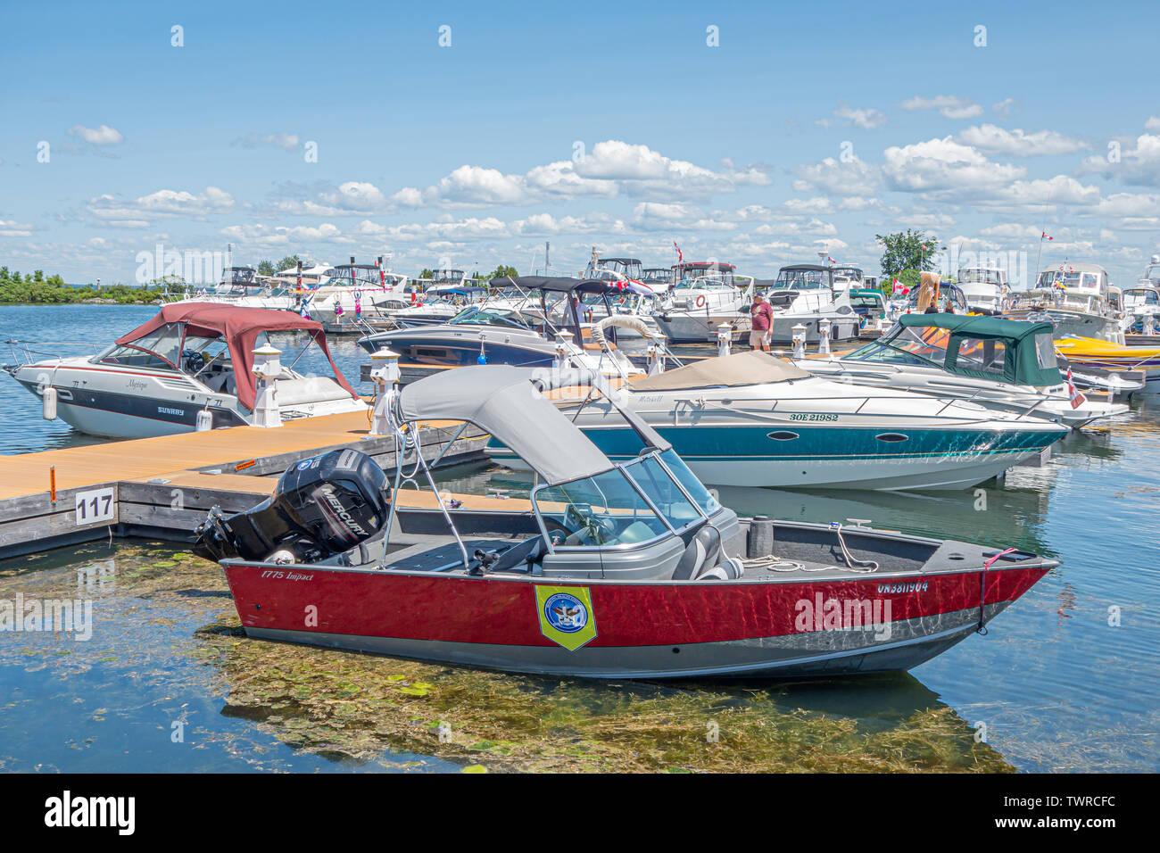 Kommunale Wildlife Control Service Boot im Hafen von Orillia Ontario angedockt. Stockfoto