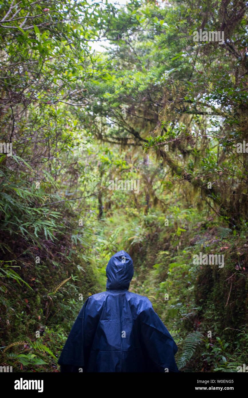 Frau unter einem blauen Regencape zu Fuß auf den Weg in die Blue Mountain, Jamaika Stockfoto
