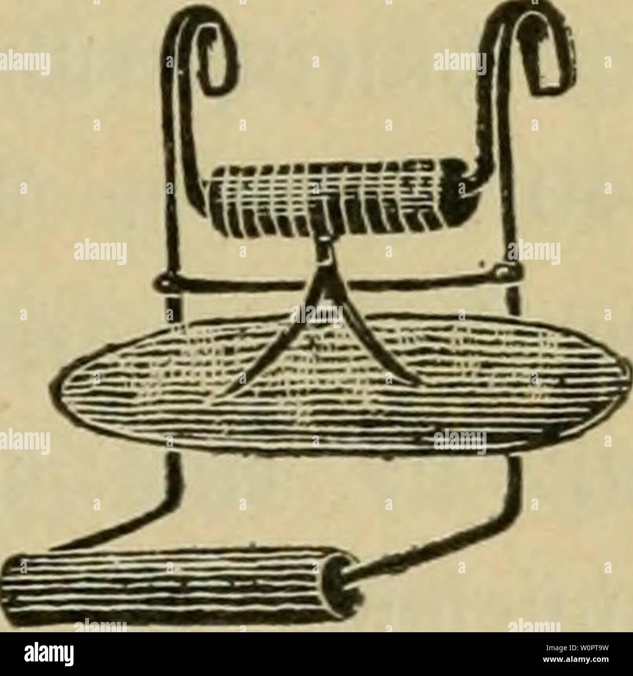 Archiv Bild ab Seite 132 von der Kanarienvogel; seine Naturgeschichte, Pflege Stockbild