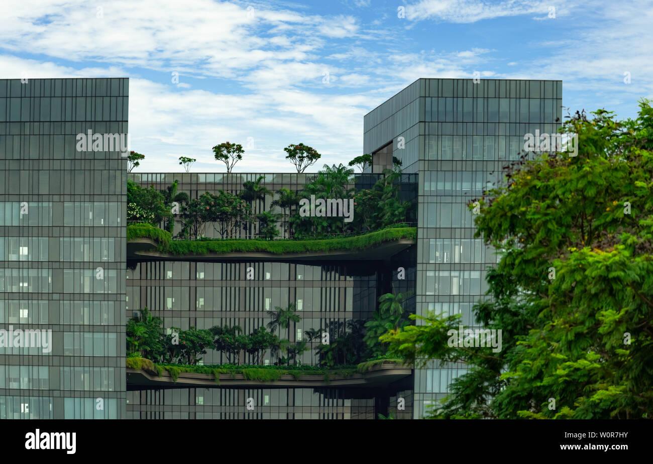 Umweltfreundliche Gebäude aus Glas mit vertikalen Garten in der modernen Stadt. Grüne Pflanze und tree forest und Efeu auf der Fassade auf nachhaltiges Bauen. Energieeinsparung Stockfoto