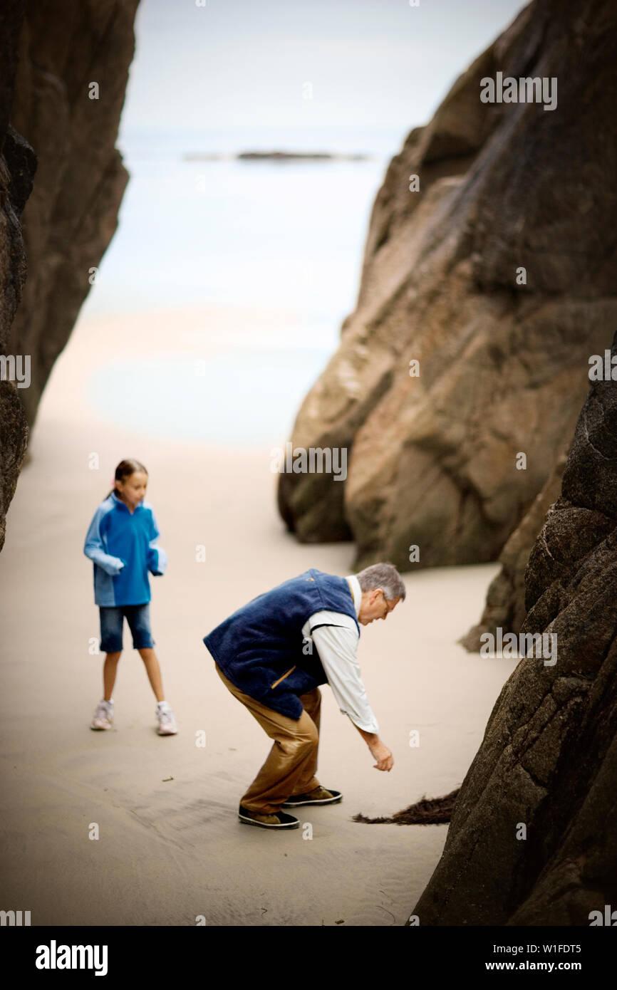 Mann beugt sich über einen Zweig der seawood in einer sandigen Bucht zu pflücken, wie seine junge Tochter nervös Uhren. Stockfoto