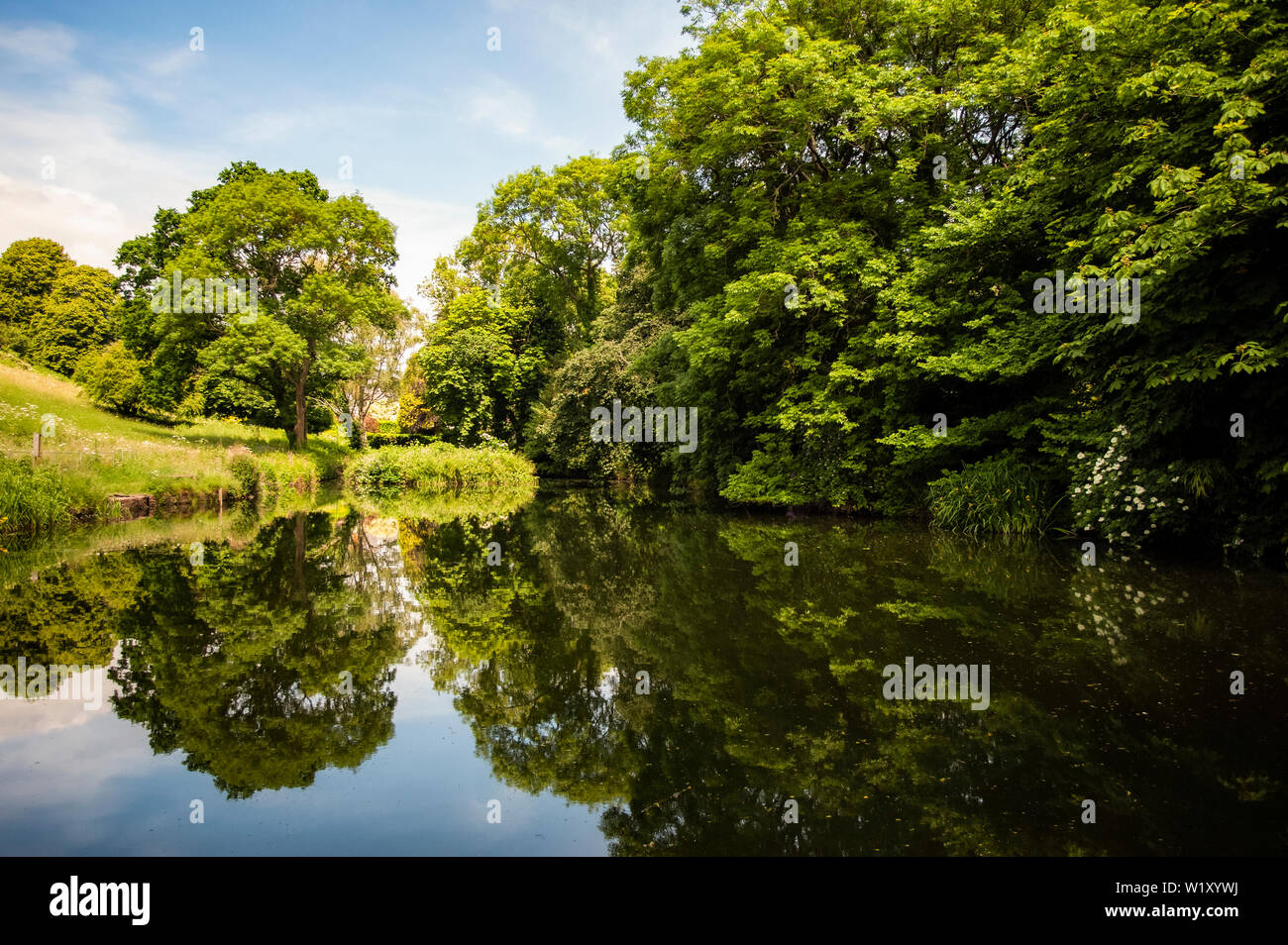Alte Sneed Park Nature Reserve, Sneyd Park, Bristol Stockfoto