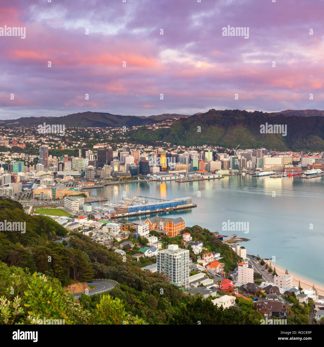Erhöhten Blick auf Zentrum von Wellington beleuchtet bei Sonnenaufgang, Wellington, Nordinsel, Neuseeland Stockbild