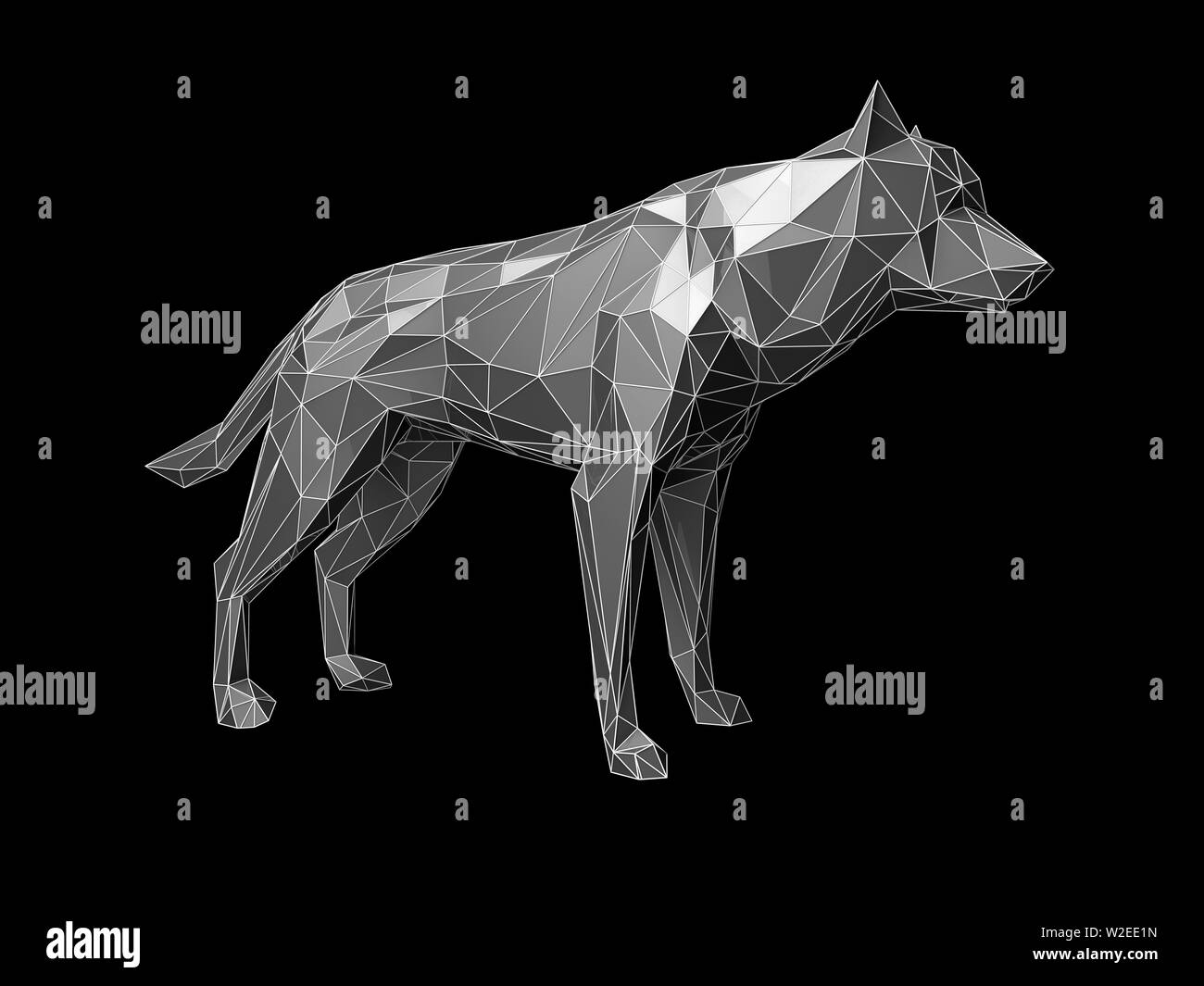 Abstract Triangle Drawing Wolf Head Stockfotos Abstract