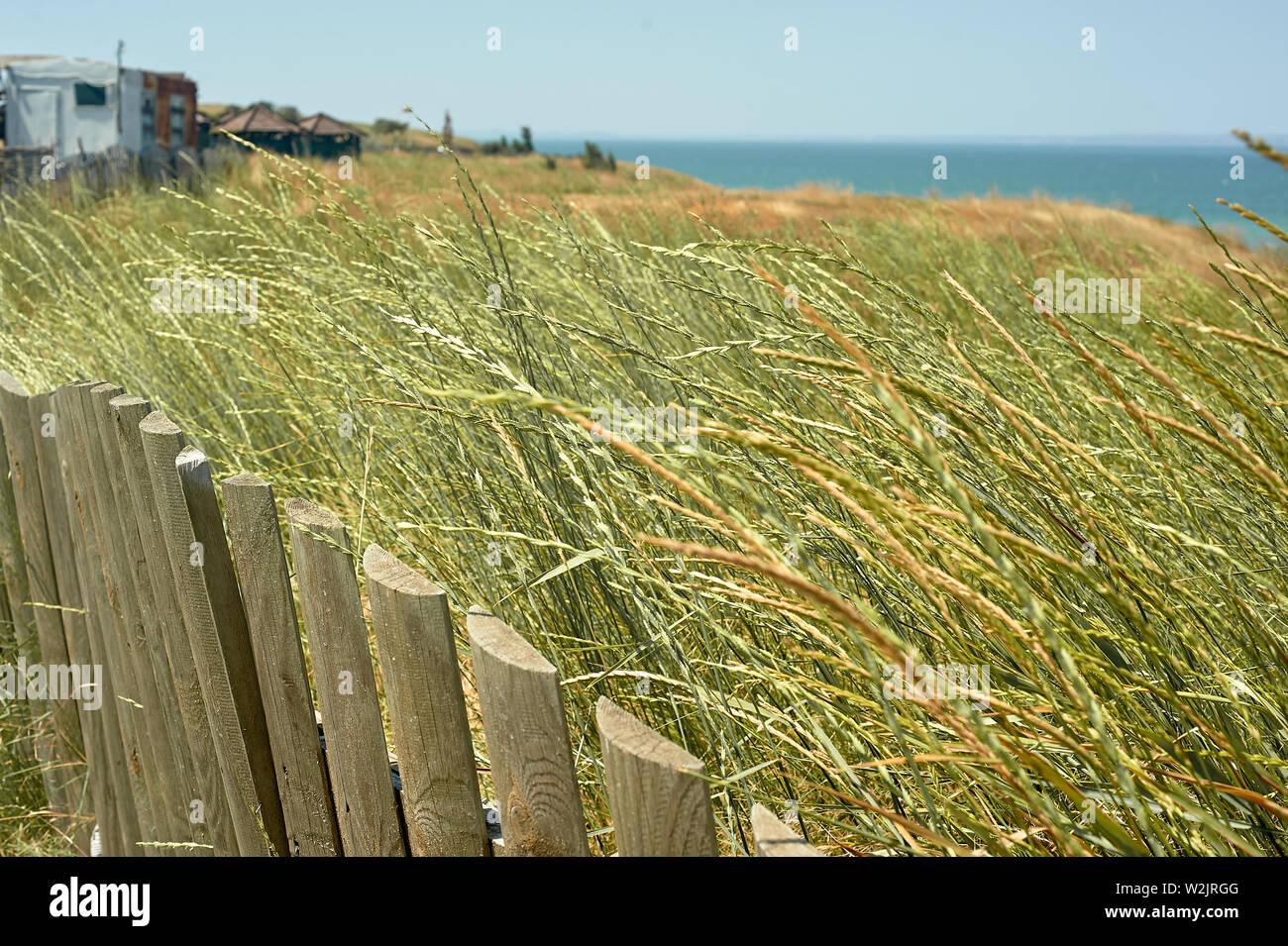 Holzzaun, hohes Gras, den Strand und das Meer. Schlichte Schönheit Stockfoto