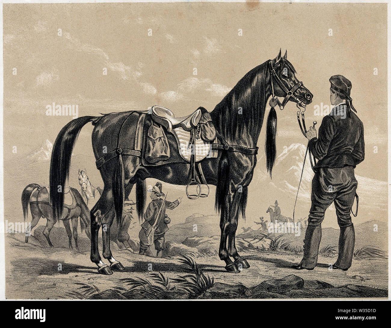 Ist ein Soldat mit einem reinrassigen arabischen Pferd durch seine Zügel. Lithographie. Stockbild