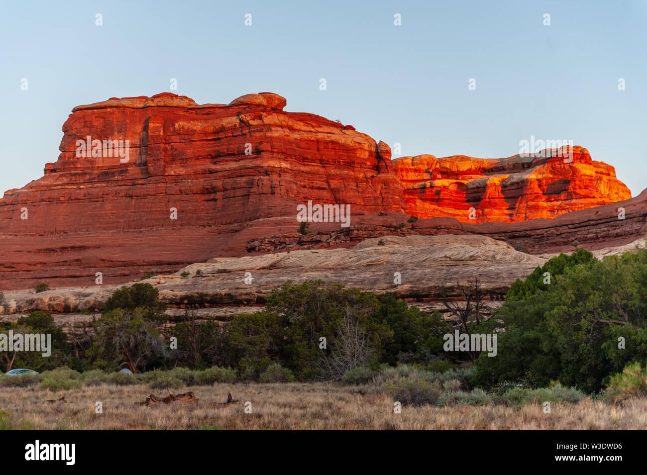 Sonnenaufgang im Needles District Campground. Canyonlands National Park, Utah Stockbild