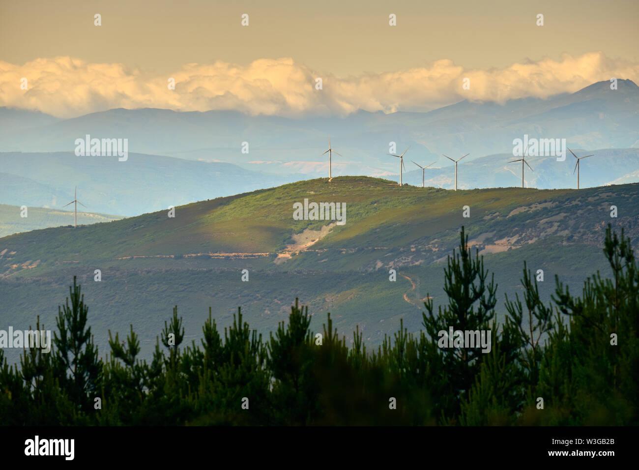 Windrad dreht Windkraftanlagen Feld in Spanisch Holz. Konzept der Erhaltung der Umwelt und umweltfreundliche Energie Stockbild