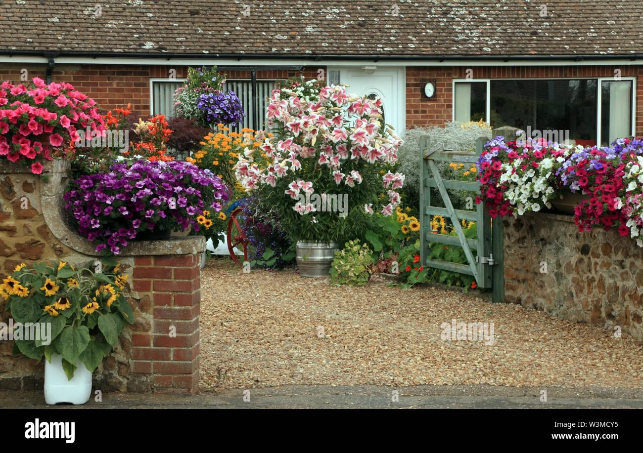 Vorgarten, Antrieb, Containerpflanzen, Engelstrompeten, Geranium, farbenfrohen Pflanzen, kleinen Haus, Bungalow Stockfoto
