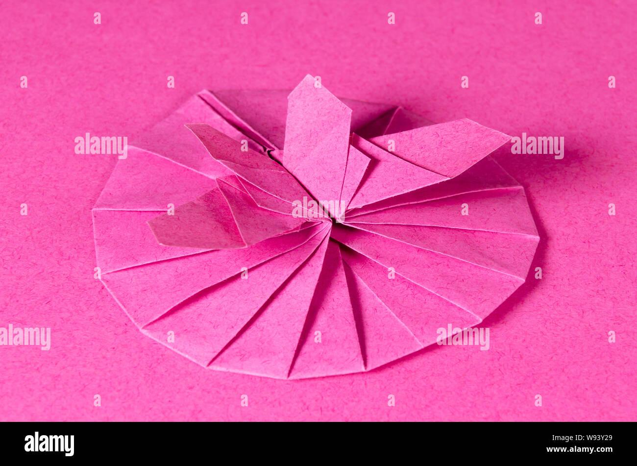 Rosa Origami Schmetterling Und Blüte Auf Rosa Hintergrund
