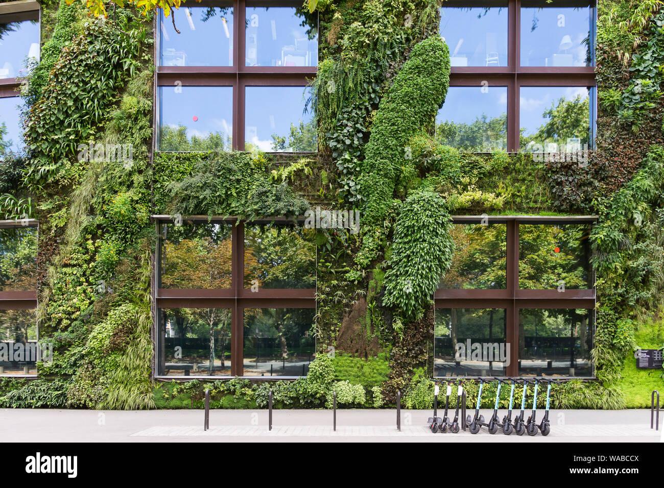 Vertical Garden Patrick Blanc Musee Du Stockfotos & Vertical ...