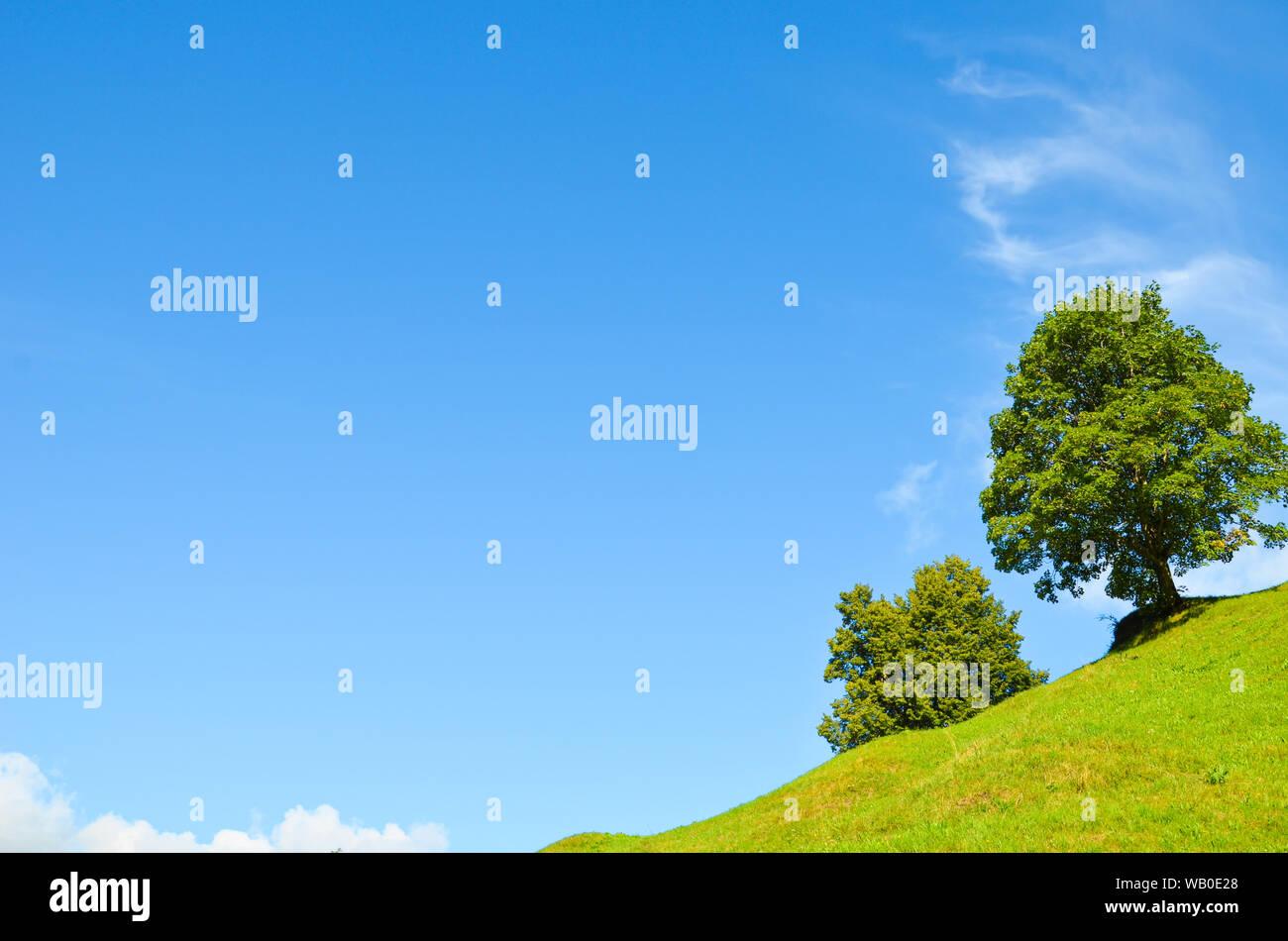 Grüne Bäume auf einem steilen Hügel, blauer Himmel mit Wolken hinter dem Horizont. Kopieren Sie Platz für Text. Der leere Raum. Motivation, persönliche Entwicklung Konzept Stockfoto