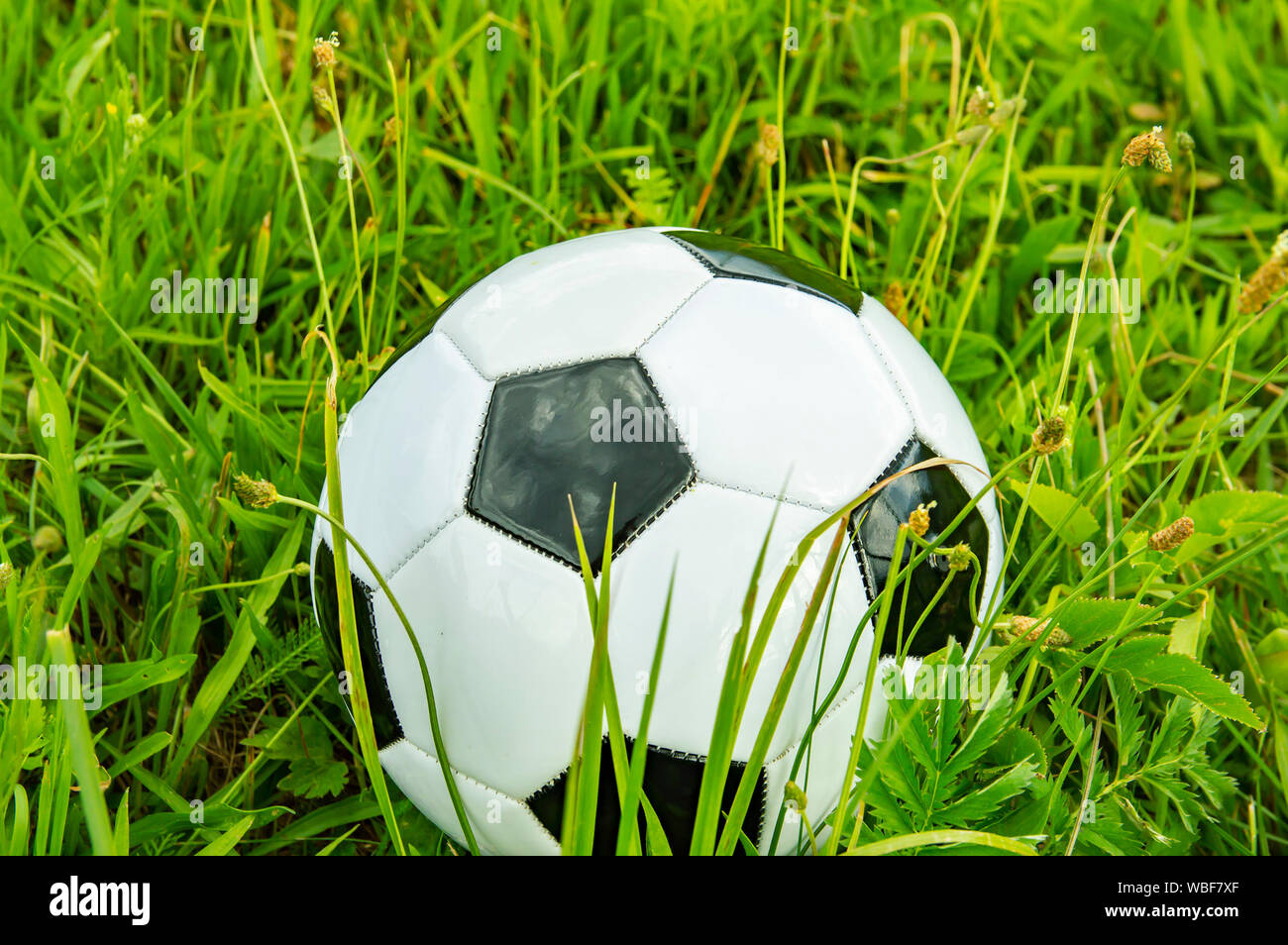 Fussball Auf Grunem Gras Platz Fur Text Hintergrundbild