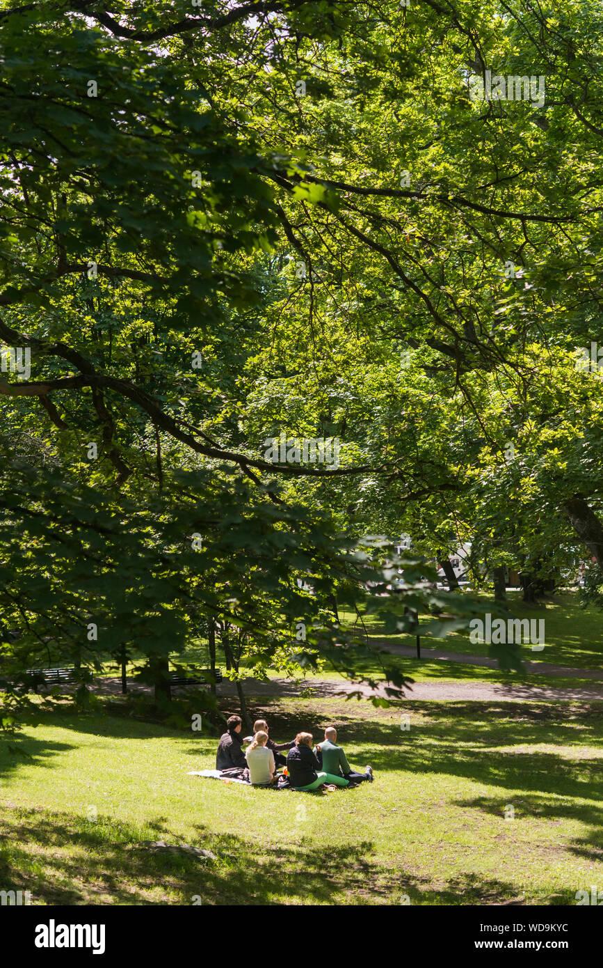 Menschen mit Picknick im Park Stockfoto
