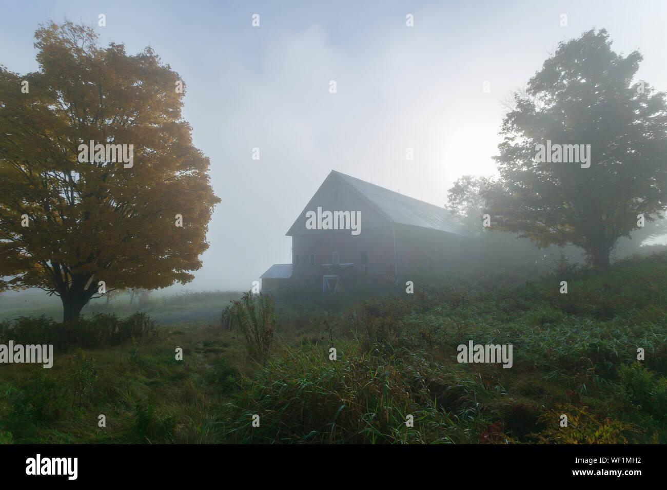 Sonnenlicht streifen durch den Nebel mit einer Scheune und Bäume auf einem herbstmorgen in Williston, Vermont, USA Stockfoto