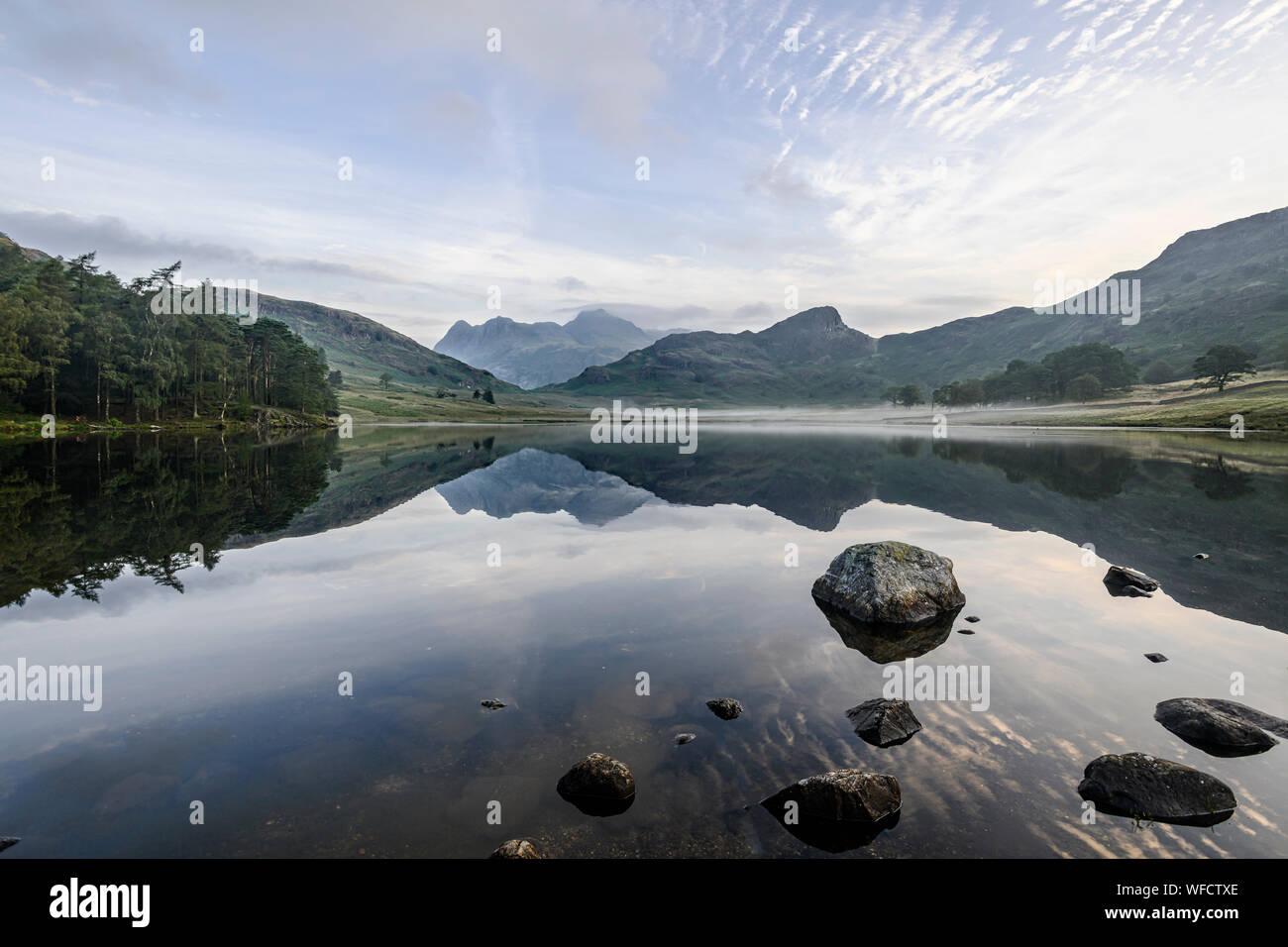 Spiegel - wie Reflexionen der Langdale Pikes in Blea Tarn am frühen Morgen im Spätsommer Stockfoto