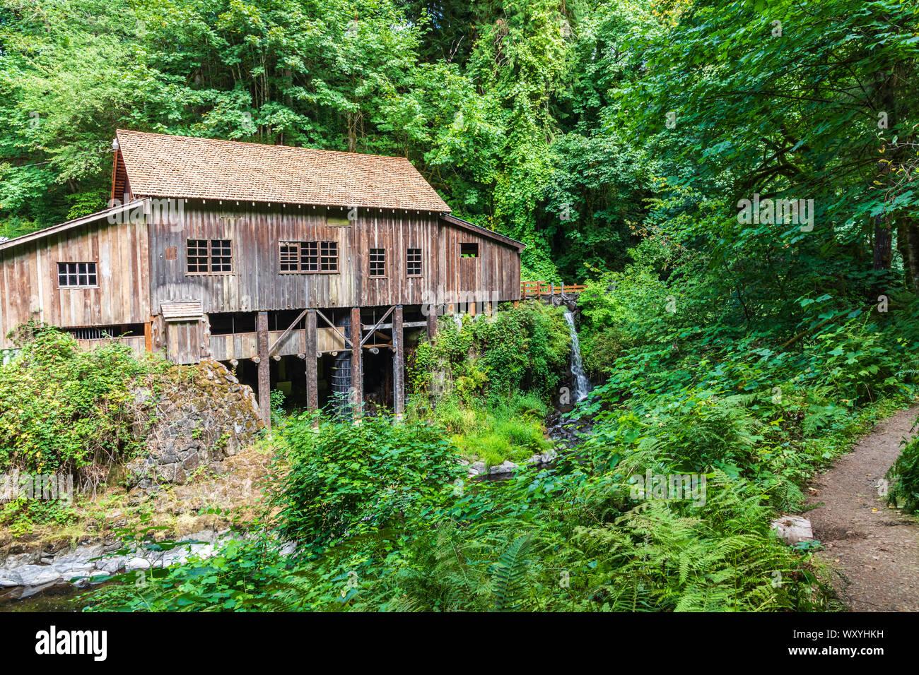 USA, Washington State, Wald. Cedar Creek Grist Mill, in der Nähe von Vancouver, Washington. Stockfoto