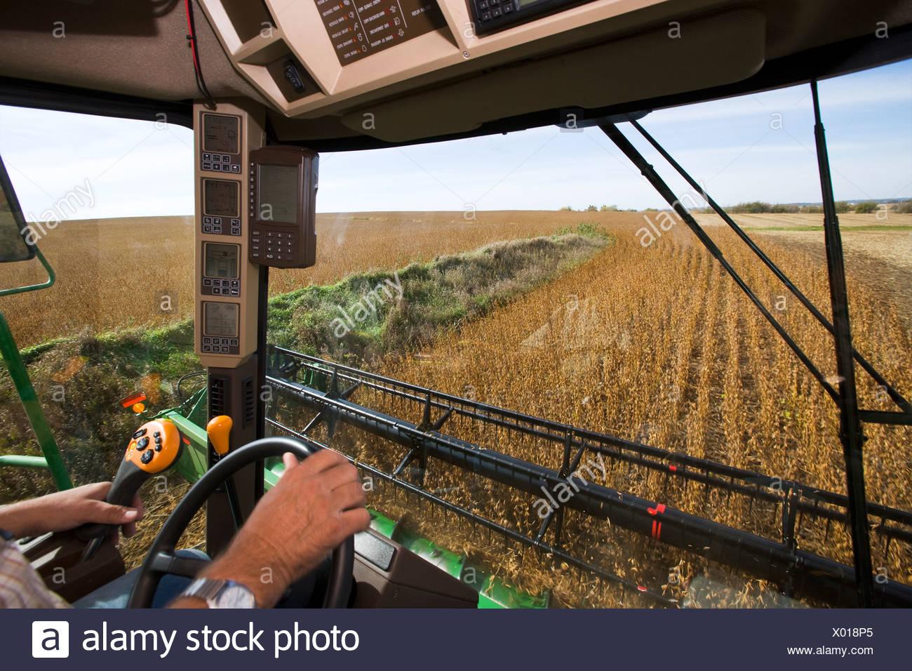 Innenansicht eines Mähdreschers während der Soja-Ernte zeigt den Ertrag Monitor und verschiedene kombinieren Betrieb Messgeräte / Minnesota, USA Stockbild