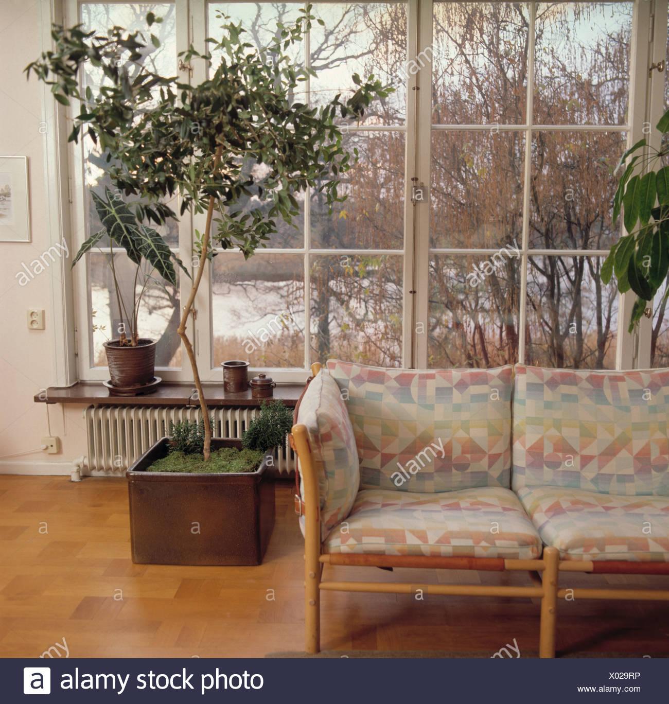 Gemusterte Kissen auf blasse Holz Sofa im Wohnzimmer mit großer Baum ...