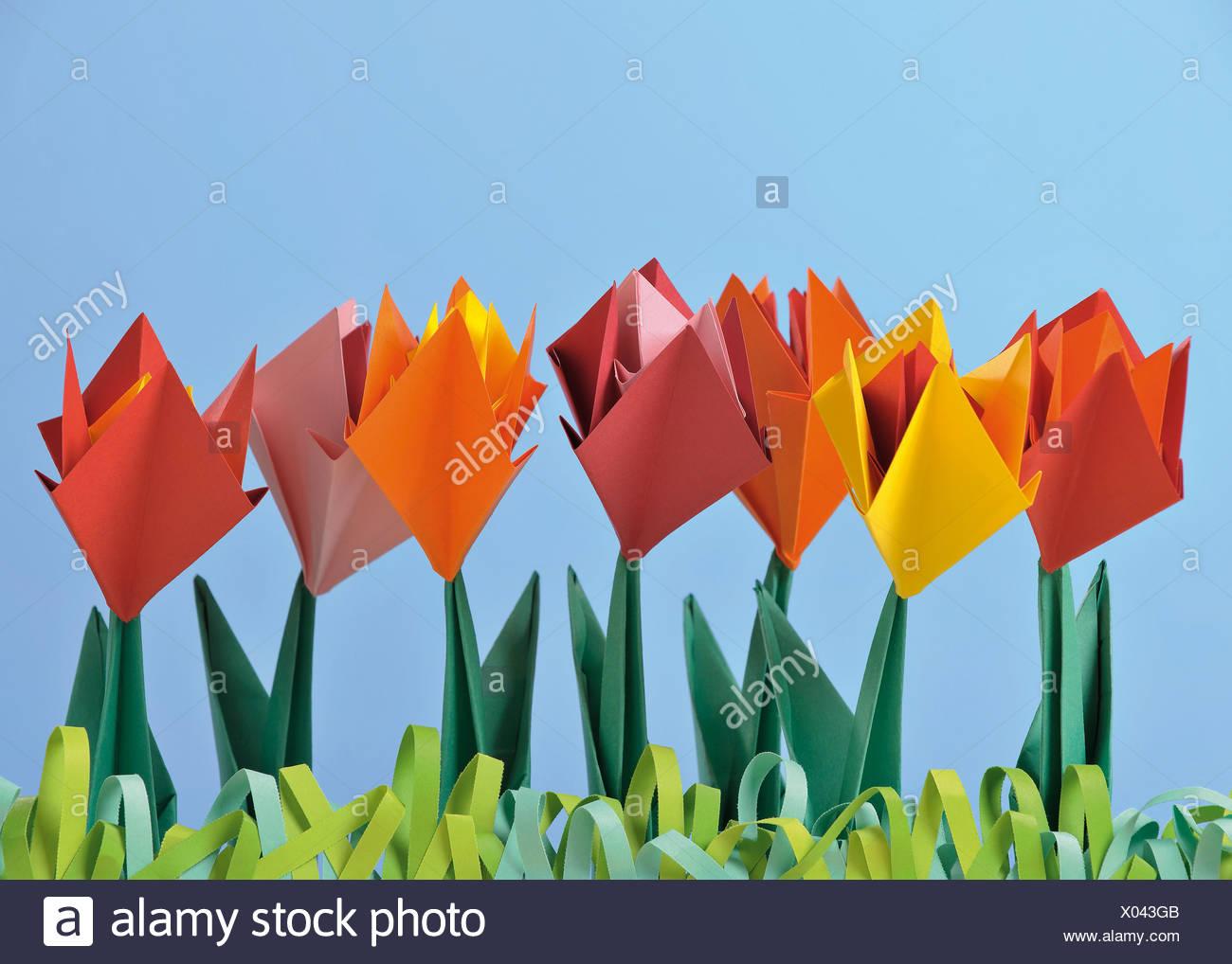 Origami Tulpen vor blauem Hintergrund Stockbild