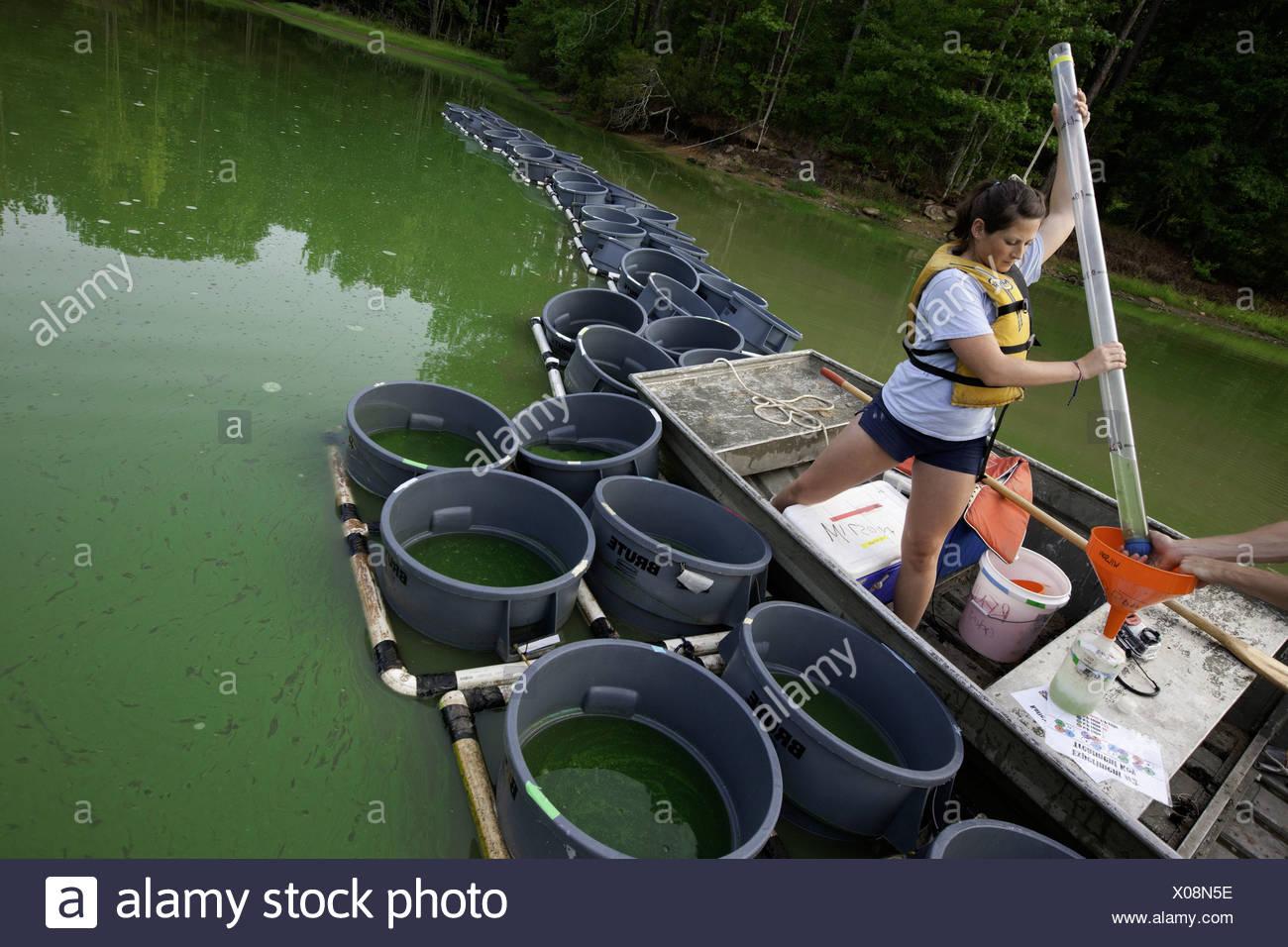 Studenten, die die Wasserproben an S10 Auburn Fischerei Teich, Auburn, Alabama. Sie sind Schüler von Alan Wilson und studieren Stockbild