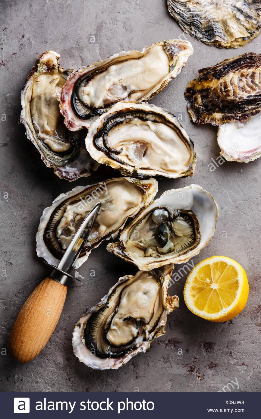 Geöffnete Austern mit Eis, Zitrone und Messer Stockbild