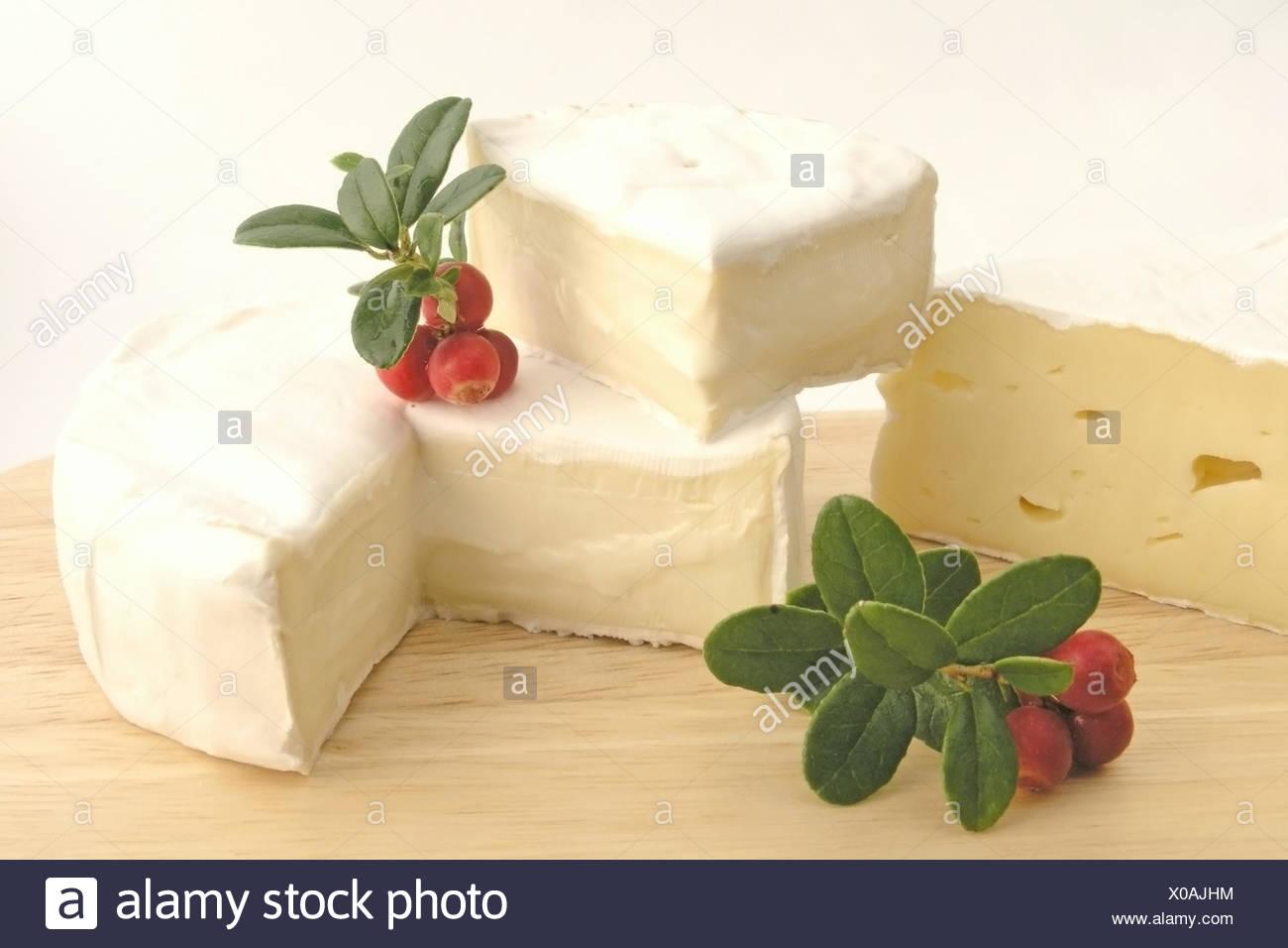 Käse, Camembert, Preiselbeeren, brie Stockbild