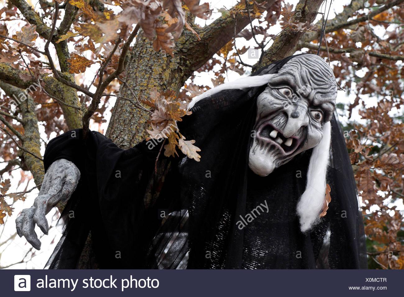 Hexe Figur, hängen von einem Baum, gruselig, Walpurgisnacht Stockbild
