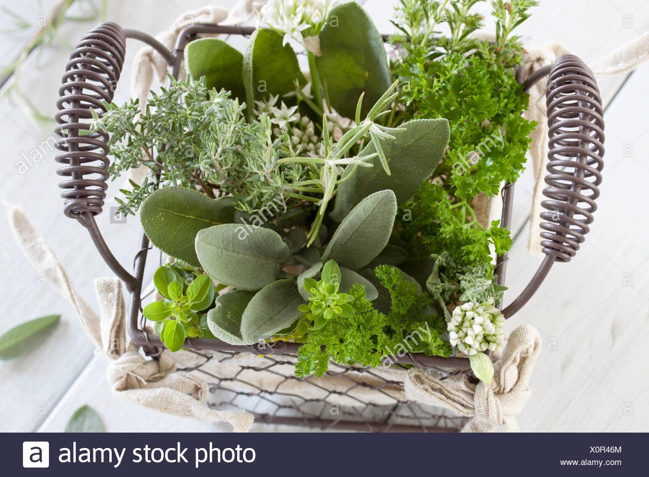 Gesunde Kräuter Küche Stockfoto, Bild: 275874108 - Alamy