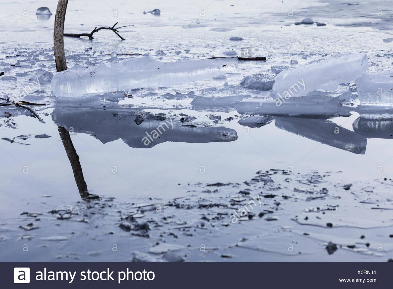 Reflexion Stockbild